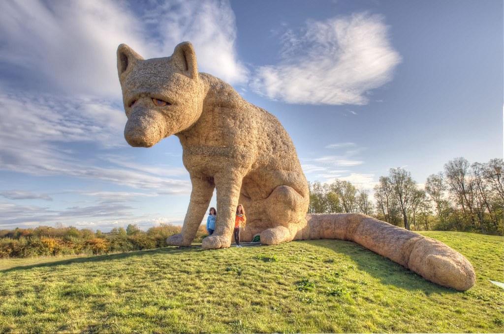 urban fox abbots ripton cambridgeshire hdr a giant scul flickr