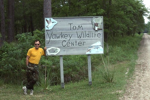 Tom Yawkey Wildlife Center | by Just Back