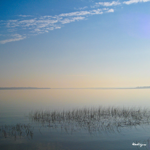 Pastel Morning - Matin pastel | by monteregina