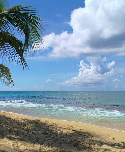Caribbean Beach: A Tantalising Caribbean Beach Scene