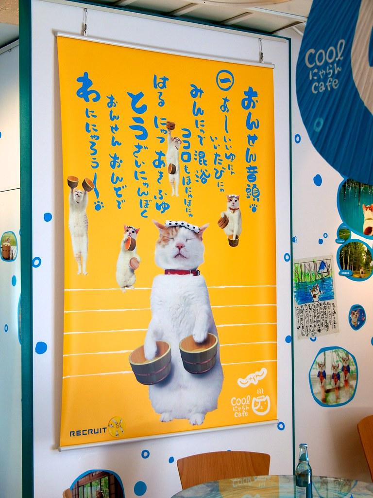 Cat Cafe Japan Tokyo