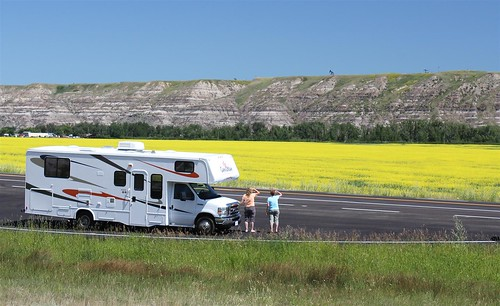 Admiring the canola near Drumheller | by CanaDreamRV