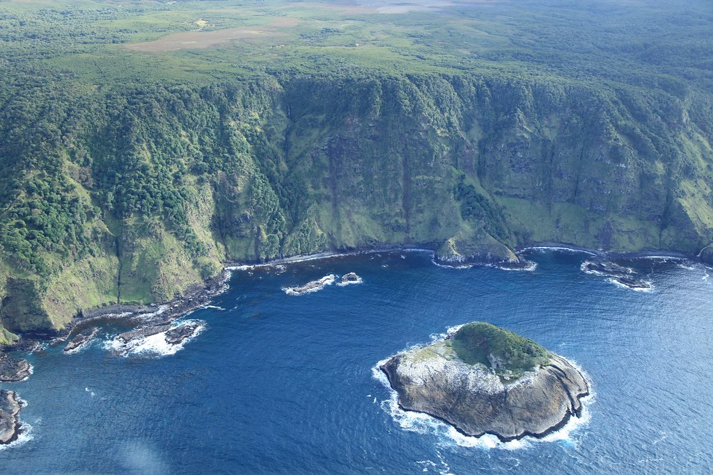 Chatham Island Nz New Zealand