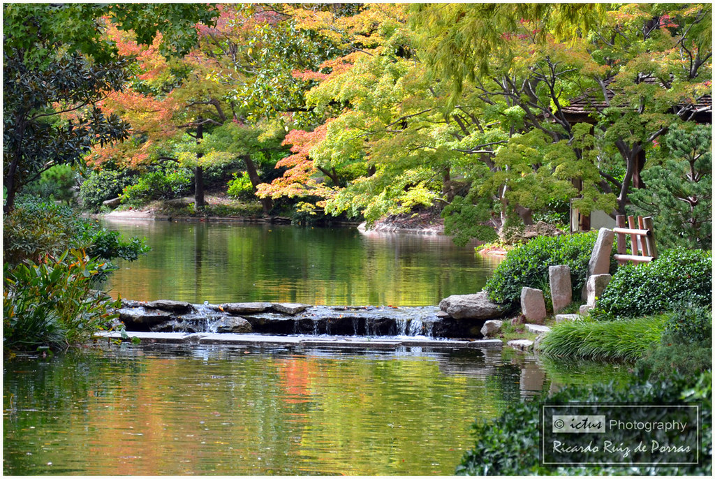 Stone Dam Japanese Gardens Fort Worth Tx Rrp Photography Flickr