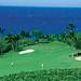 HTS Wailea Golf