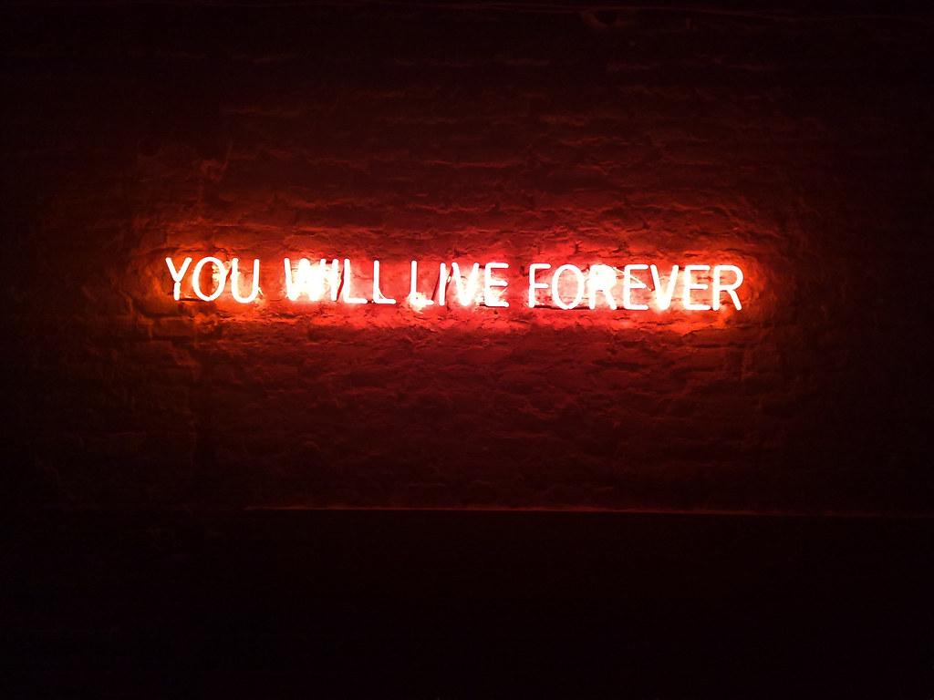 Neon Lights You Will Live Forever Djordje Radovanovic
