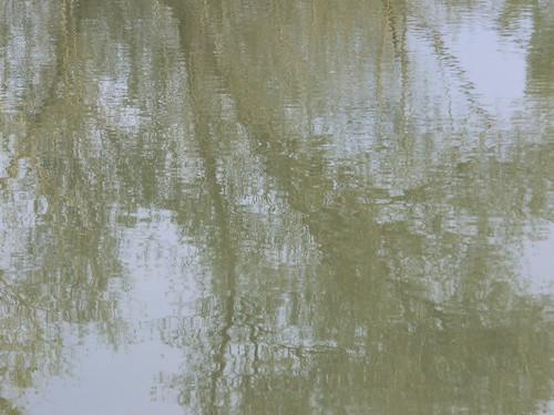 Solo le fronte si riflettono sullo specchio invasi della b flickr - La mano sullo specchio ...