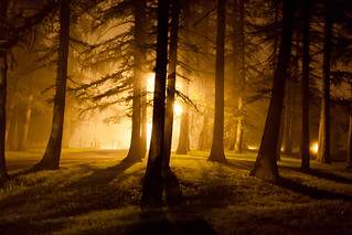 Night Fog - Albany, NY - 2011, Sep - 01.jpg | by sebastien.barre