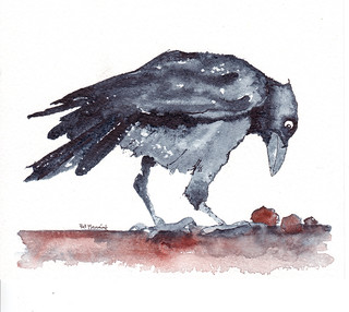 Crow | by patmanning
