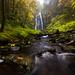 Smith Falls, Oregon