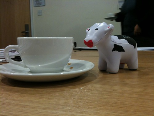 Cow, cup, coffee | by touring_fishman