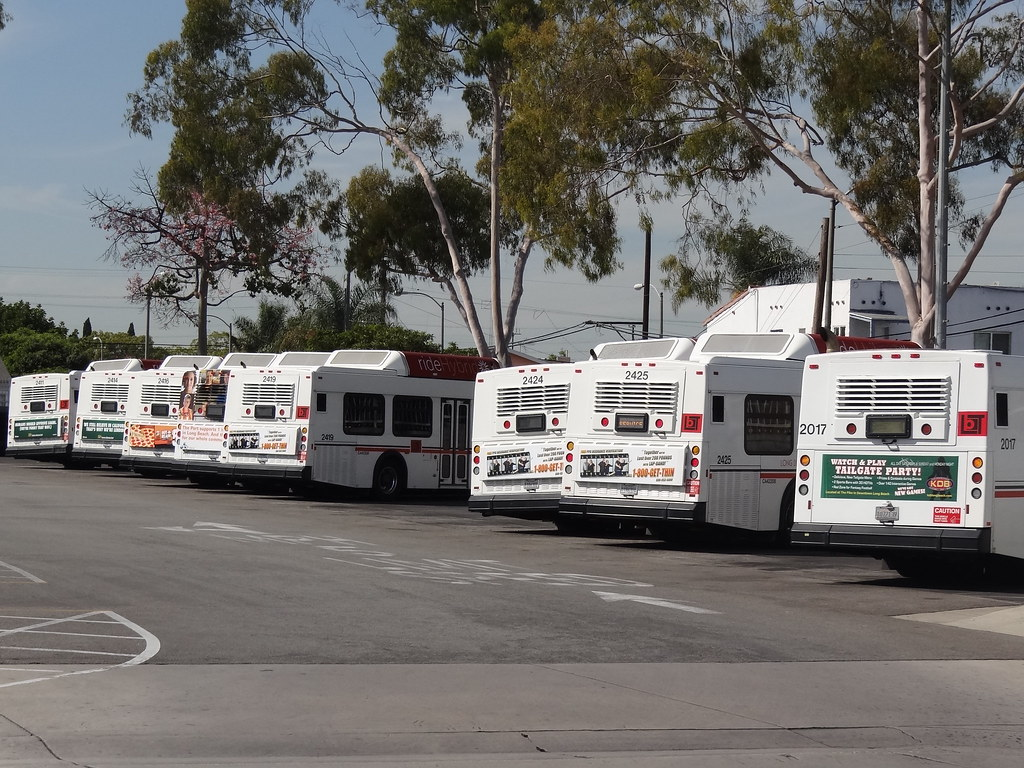Long Beach Transit Bus