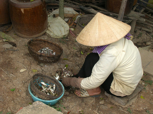DongThap, Vietnam. Photo by Hong Meen Chee, 2009 | by WorldFish