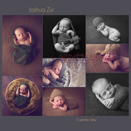 newborn photographer studio | by Bitsy Baby Photography [Rita]