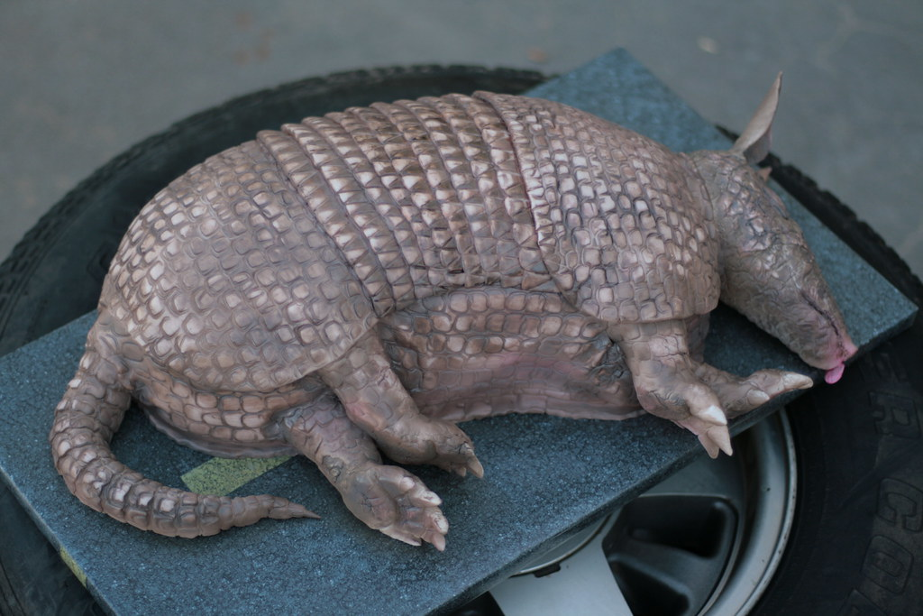 Armadillo Cake 9 Tire My Original Plan Was To Make Him