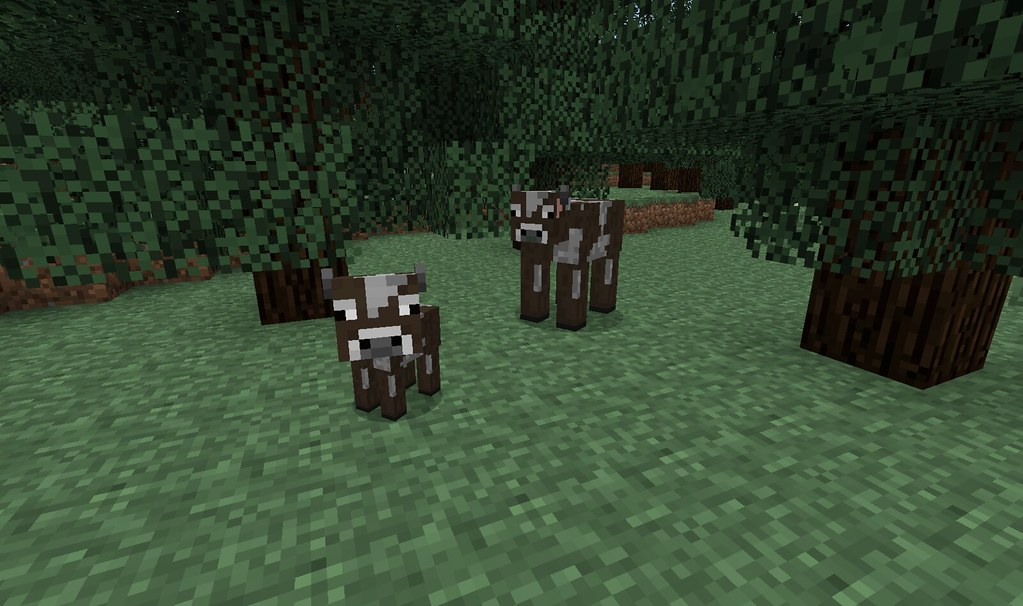 Baby Calf in Minecraft   Trying out 1.9.5 prerelease and ...