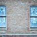 Lemp Windows