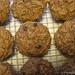 100% whole grain carrot, raisin, zucchini bran muffins