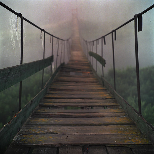 Road to the forest 2 | by Anton Novoselov