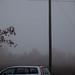 Misty morning #05