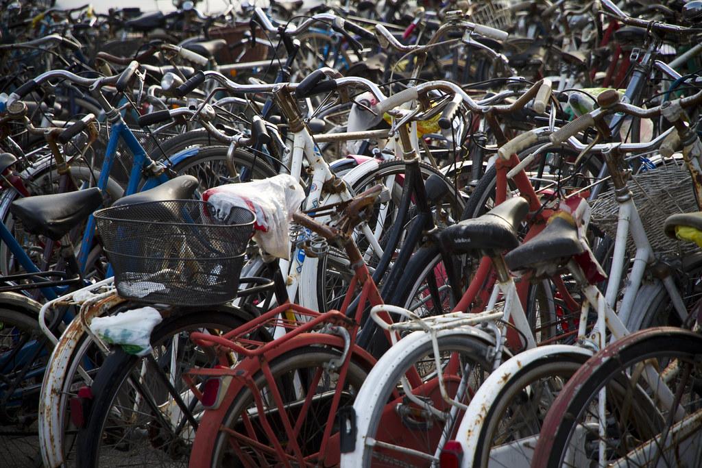 The Bicycles of Ferrara (55)