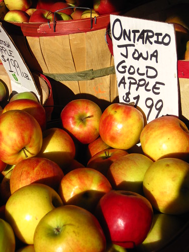 ontario apples | by prettyhowtown