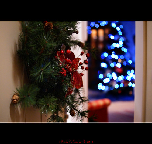 """Christmas is a time when you get homesick - even when you're home."" ~Carol Nelson 