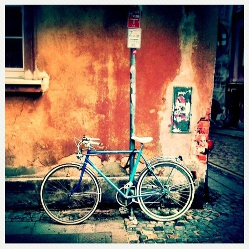 Iphone  Bicycle Mount
