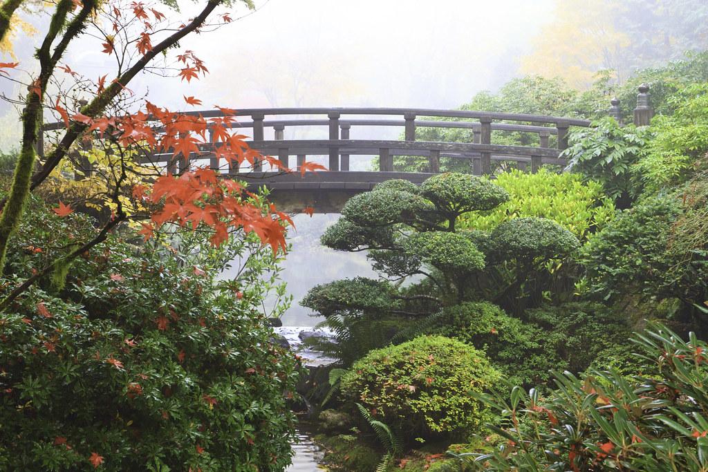 Japanese gardens portland oregon 2300 a cool foggy day - Portland japanese garden free day ...