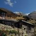 De Pisang (3200m) à Ghyaru (3700m)