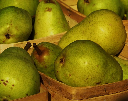 Fresh Pears | by Renee Rendler-Kaplan