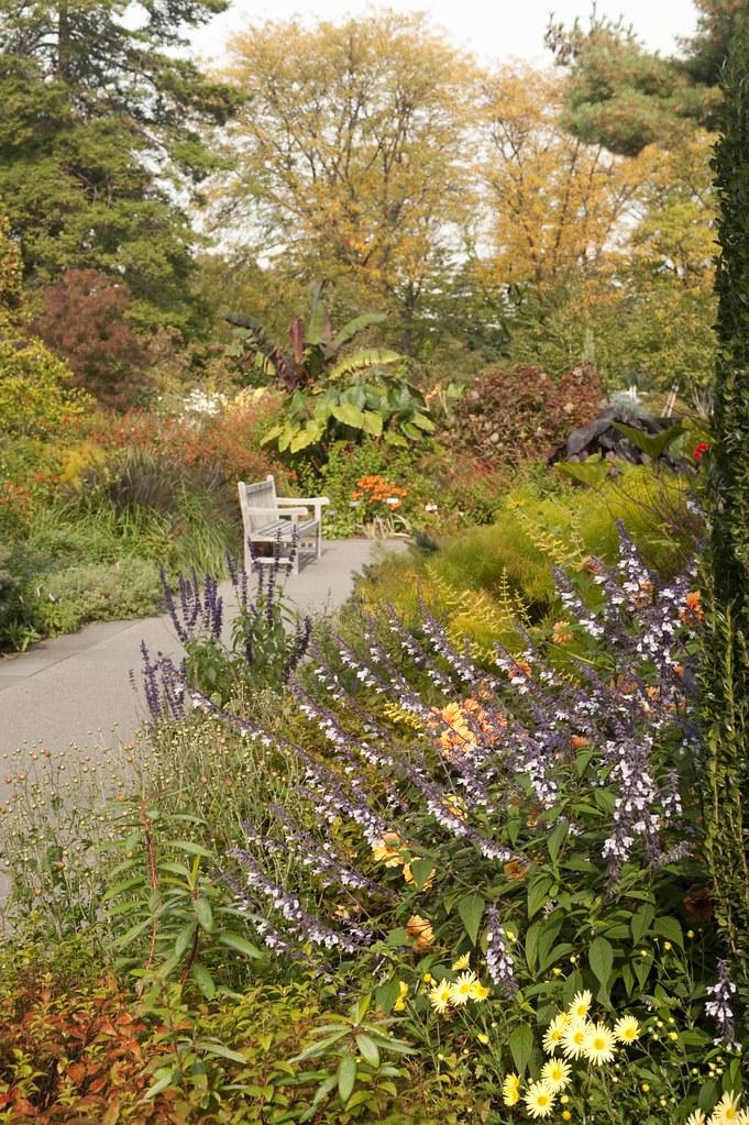 Perennial Garden Photo By Ivo M Vermeulen The New York Botanical Garden Flickr