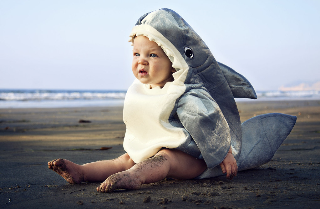 Baby Shark Costume includes: Jumpsuit; Attached hood; Booties; Rattle; More on Baby Shark Costume: Duuunn dunn duuunn dunn Watch out for this adorable Baby Shark Costume! The soft gray and white jumpsuit comes with non-skid booties for traction.