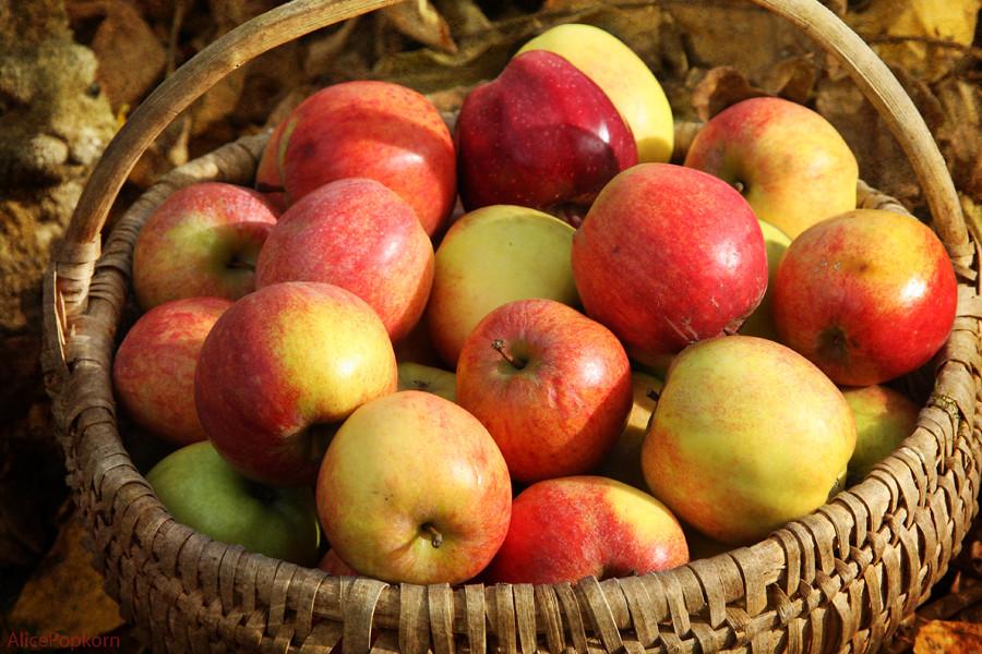 Печеные яблоки после родов