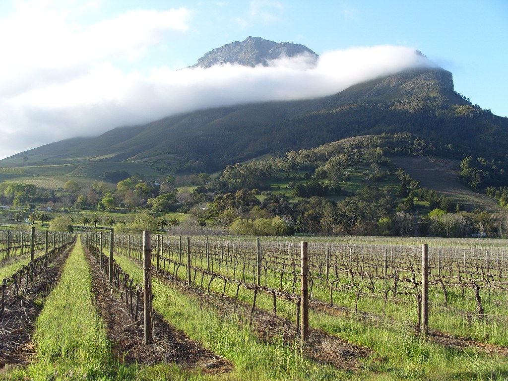 The stellenbosch wine route iryna kuchma flickr for Jardin winery south africa