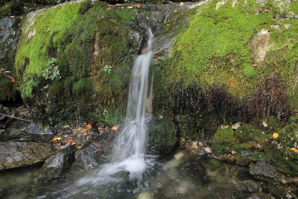 Resultado de imagen de Fuentes del Río Cadagua