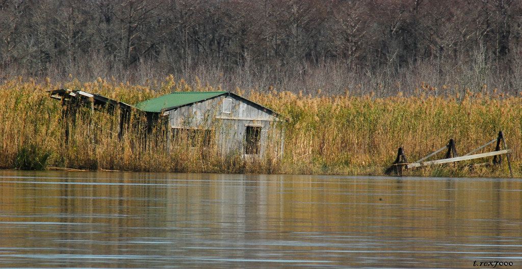 Abandoned Fishing Camp Tensaw River Mobile Tensaw Delta