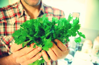 cilantro is good for the soul | by lion heart vintage