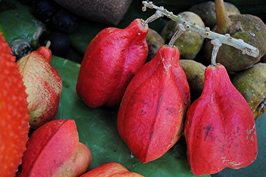 Ackee... healthy and nutritious or toxic and poisonous ...