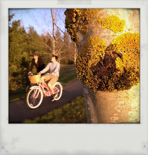 From behind the lichen covered tree, I spy a boy on a pink bike | by Janine Graf