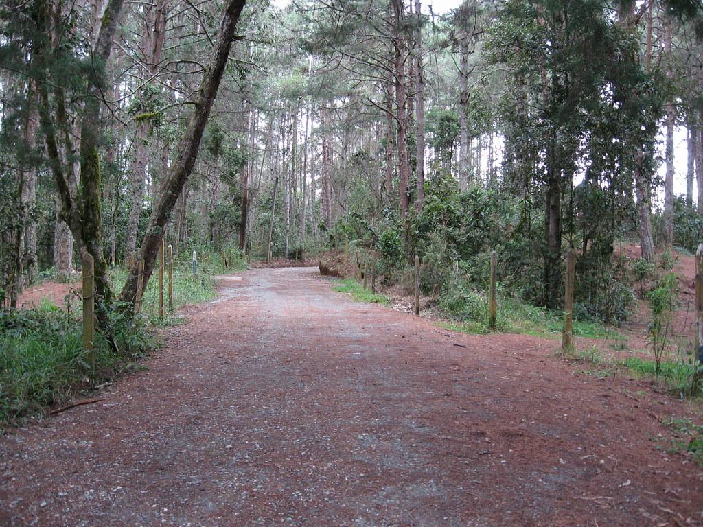 Resultado de imagen para carretera medellin santa elena
