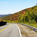 Fall color along the Highland Scenic Highway