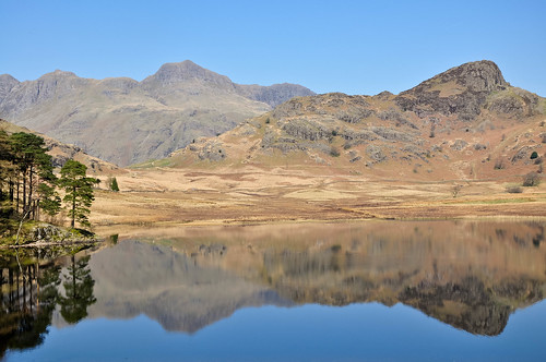 DSC_0417 Blea Tarn | by wilkie,j ( says NO to badger cull :(
