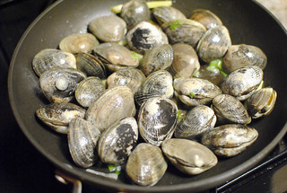 clams | by Darin Dines