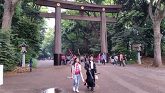 明治神宮 • Meiji-jingu