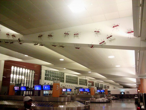 airport ants | by BoringPostcards
