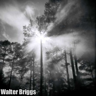 Smoky Trees | by Walter Briggs