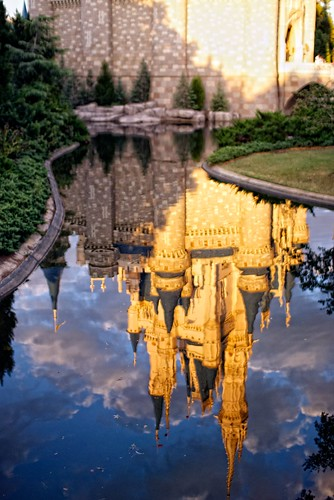 Golden Reflections | by wdwben