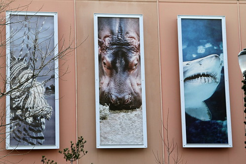 Image Result For Nj Aquarium
