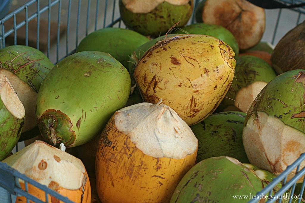 Grand Cayman Coconuts